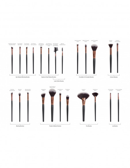 RIO BEAUTY BRST_Know your brushes_RGB_HR 01_0.jpg
